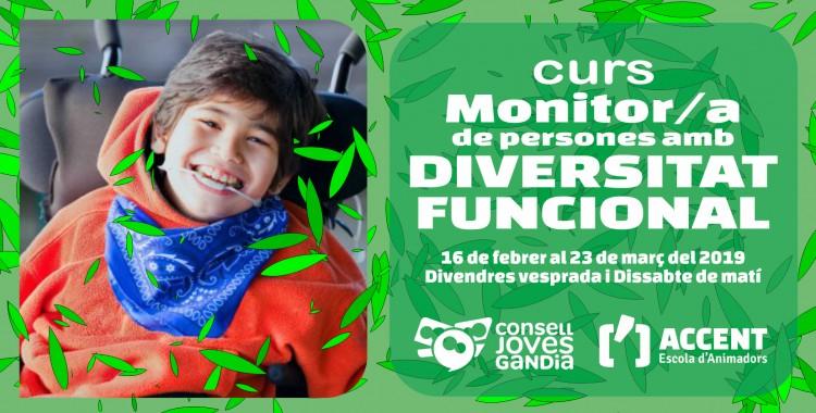 16.02.2019 GANDIA Curso DIVERSIDAD FUNCIONAL - ARTICULO WEB con Logos